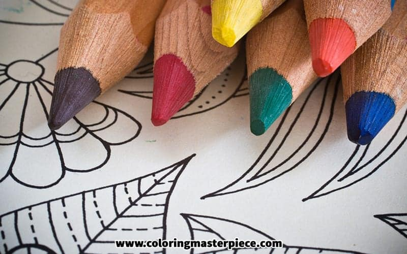 - The 20 Best Adult Coloring Books (With Swear Words!) – Adult Coloring  Resources
